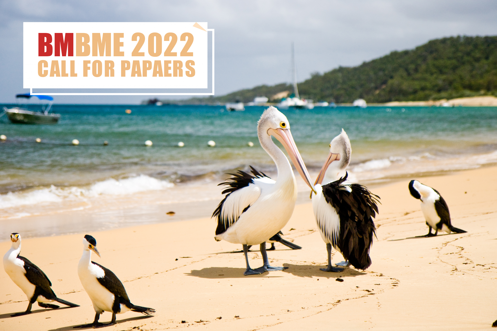 BMBME2022 Call for Papers
